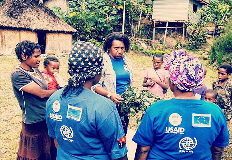 An IOM staffer hands over sweet potato vines to Enga villagers. Photo: IOM 2016