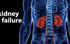 Do you know about kidney disease?