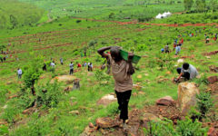The people of Rwanda seek for a greener tomorrow