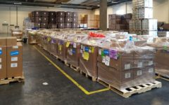 European Union and Government of Denmark support UNICEF in shipping vital supplies to Mali
