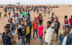 IOM supports thousands of migrants stranded in Djibouti