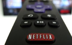 Netflix warns of slowdown after subscriber surge