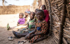 15 million cases of acute malnutrition expected in 2020 in Africa