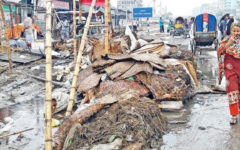 On Eid-ul-Adha, 13,000 tons of waste was accumulated in Dhaka