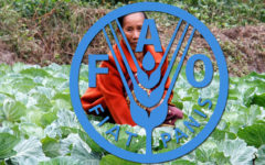 Bangladesh, other Asia-Pacific countries convene virtual FAO conference