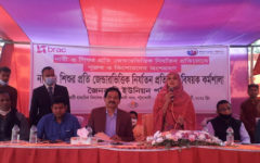 Workshop on Gender Based Violence against Women and Children in Patuakhali
