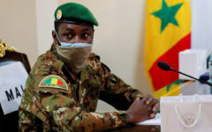 World Bank suspends financial operation in Mali after coup