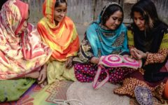 The e-commerce marketplace for women entrepreneurs in Bangladesh, Laalsobuj.com launched